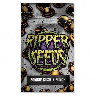 Zombie kush x purple punch