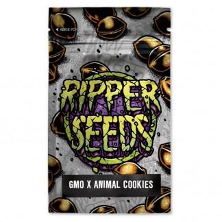 GMO x Animal Cookies