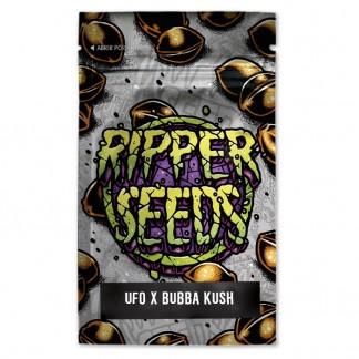 UFO x Bubba Kush